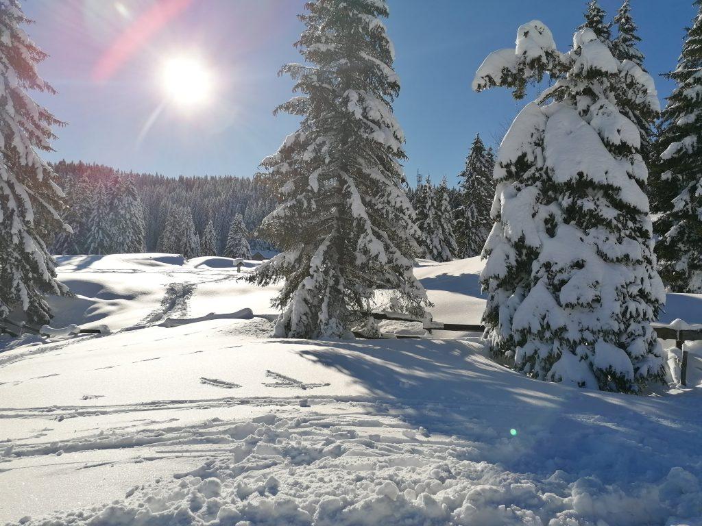 Folgaria winter escape